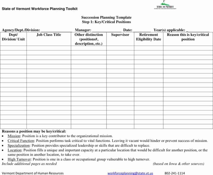 Business Succession Plan Template Awesome Download Succession Planning form for Free Tidytemplates