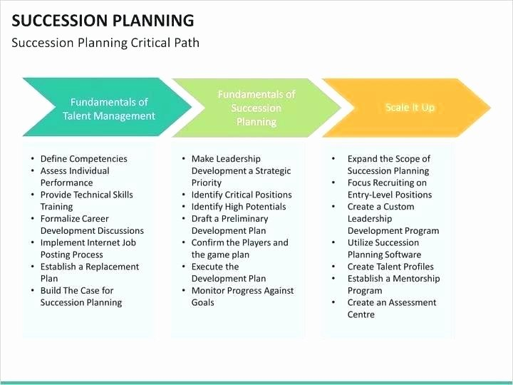 Business Succession Plan Template Inspirational Program Template Business Succession Plan Planning Decent