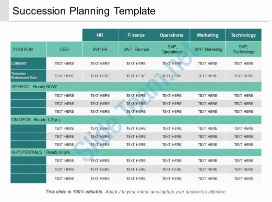 Business Succession Plan Template Unique Succession Planning Template Ppt Sample Download