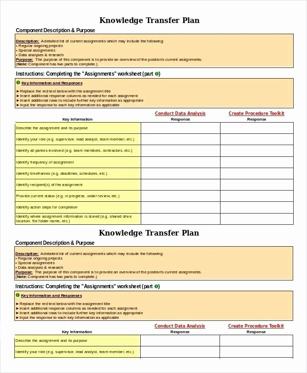 Business Transition Plan Template Beautiful Business Transition Plans Examples Business Transition