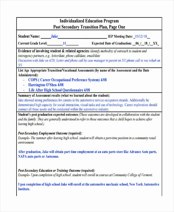 Business Transition Plan Template Lovely 10 Transition Plan Examples Samples