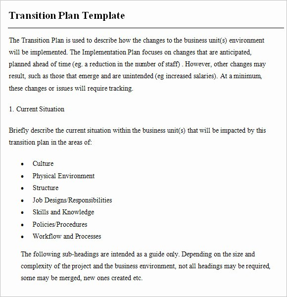 Business Transition Plan Template Luxury 9 Transition Plan Samples