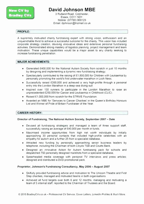 capability statement template doc personal in resume sample word document 8 profile format in e templa