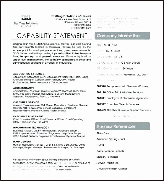 Capability Statement Template Word Inspirational Designs Create Single Page Marketing Capabilities