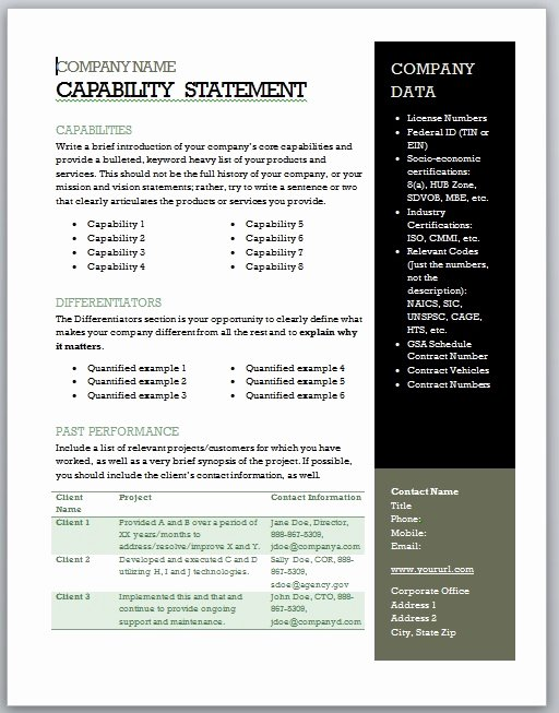 Capability Statement Template Word Luxury Get Started Quickly