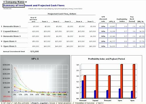 Capital Budget Template Excel Inspirational Sample Capital Expenditure Bud Request form Excel