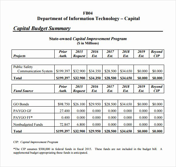 Capital Improvement Plan Template Luxury 7 Bud Summary Samples