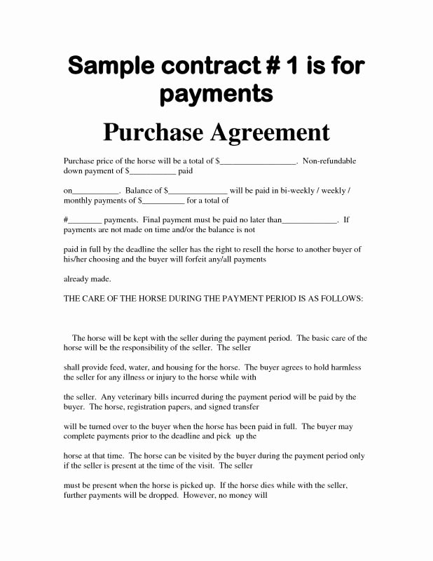 Car Payment Agreement Template Inspirational Simple Bill Sale for Car