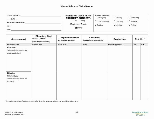 Care Plan Template Pdf Elegant Blank Nursing Care Plan Templates Google Search