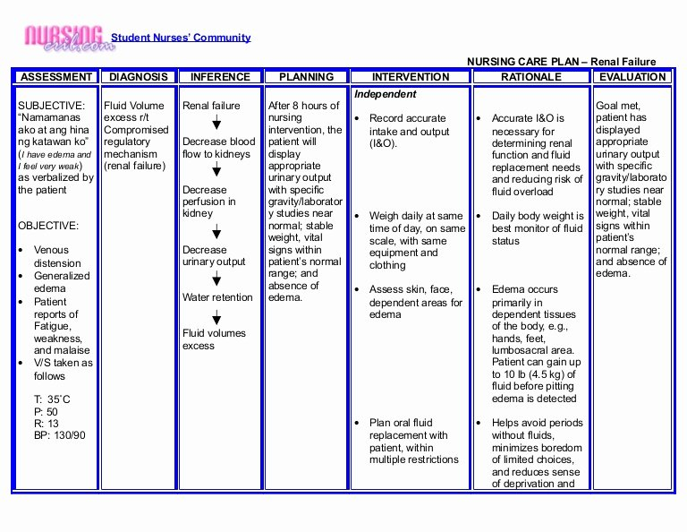 Care Plan Template Pdf Fresh Nursing Crib Nursing Care Plan Renal Failure