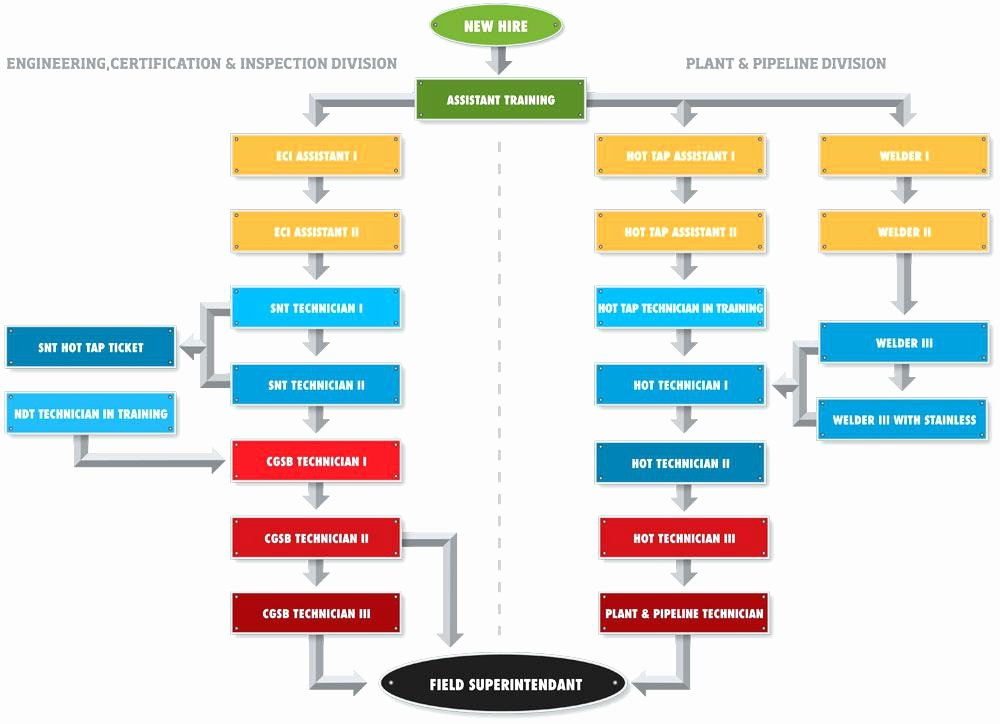 Career Path Planning Template Lovely Certification Career Path Plan Map Template Mapping for