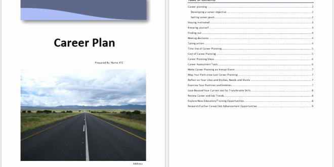 Career Path Planning Template Luxury Career Plan Template – Microsoft Word Templates