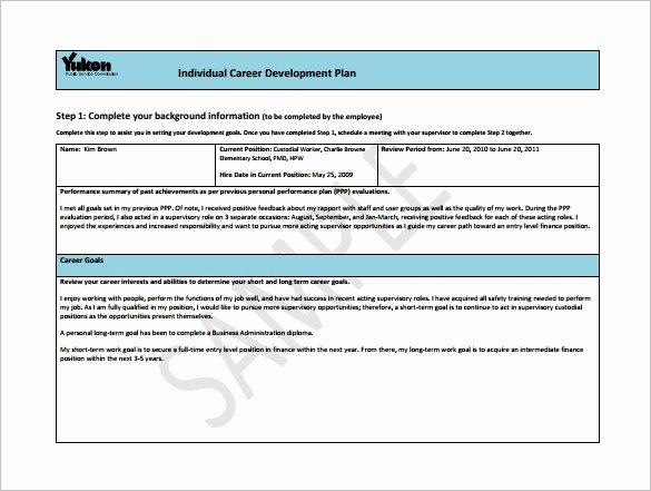 Career Path Planning Template Unique Career Development Plan Template 10 Free Word Pdf