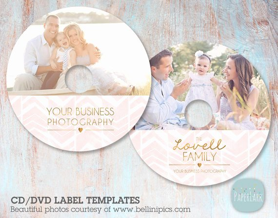 Cd Label Template Photoshop Unique Cd Dvd Label Photoshop Template Es007 Instant Download