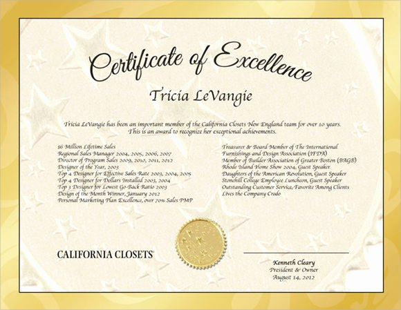 Certificate Of Excellence Template Lovely 9 Certificate Of Excellence Templates – Samples Examples