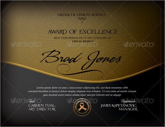 Certificate Of Excellence Template Luxury 7 Sample Certificate Of Excellence Templates to Download
