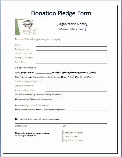 Charitable Donation form Template Luxury Sample Donation Pledge form