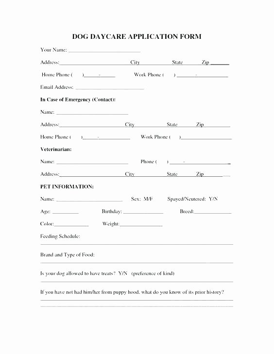 Child Care Application Template Awesome Child Care Application Template – Lvmag