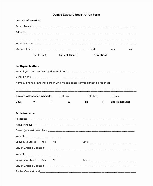 Child Care Application Template Luxury Free Child Care Application form Template – Versatolelive
