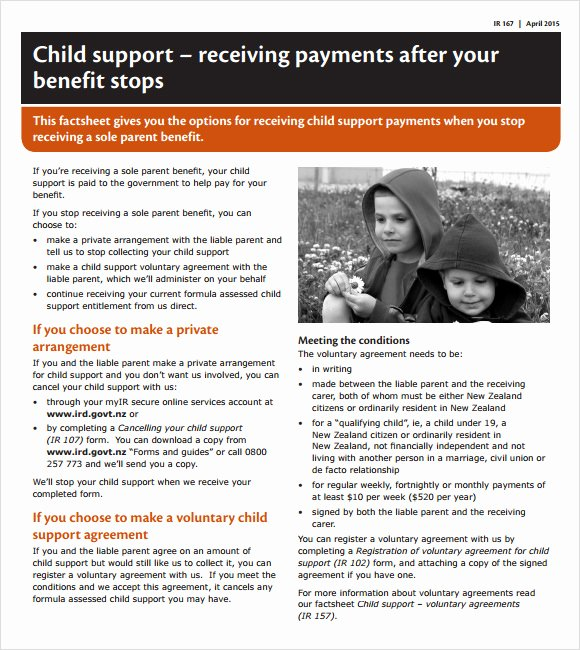Child Support Agreement Template Fresh 8 Sample Child Support Agreements