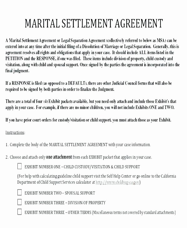 Child Visitation Agreement Template Elegant Parallel Parenting Plan Child Custody Template Examples