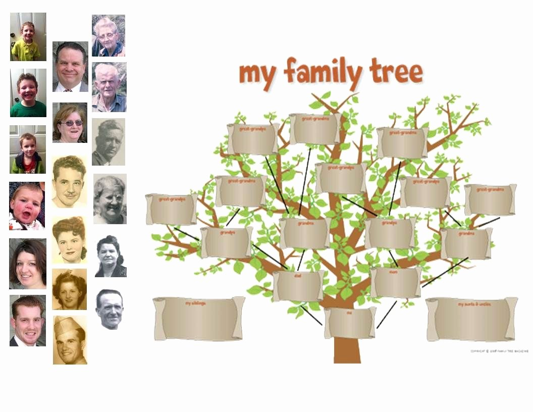 Children Family Tree Template Luxury Cut Out A Family Tree Template and Tape It to Your