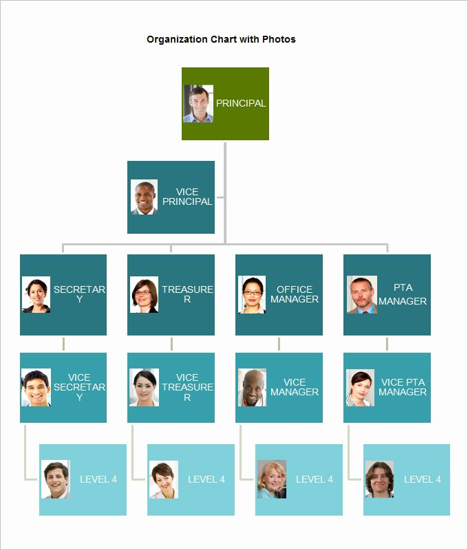 Church organizational Chart Template Unique 49 Fresh Church Leadership Structure Flow Chart