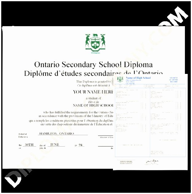 College Diploma Template Pdf Inspirational 5 High School Diploma Template with Seal Ioryu