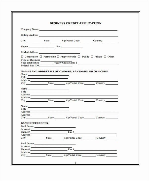 Commercial Credit Application Template Unique 9 Business Credit Application form Free Sample Example