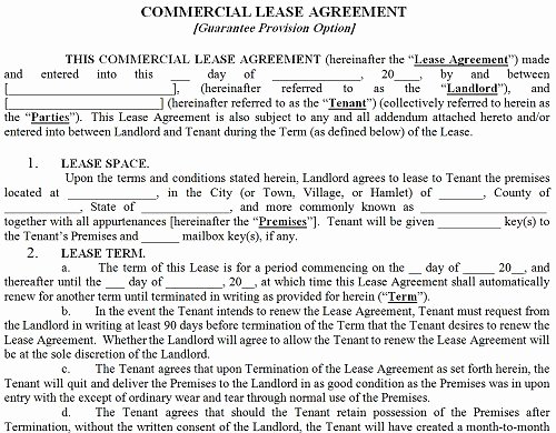 Commercial Lease Application Template Unique Mercial Lease Agreement
