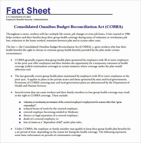 Company Fact Sheet Template Beautiful 17 Fact Sheet Templates – Free Samples Examples & format