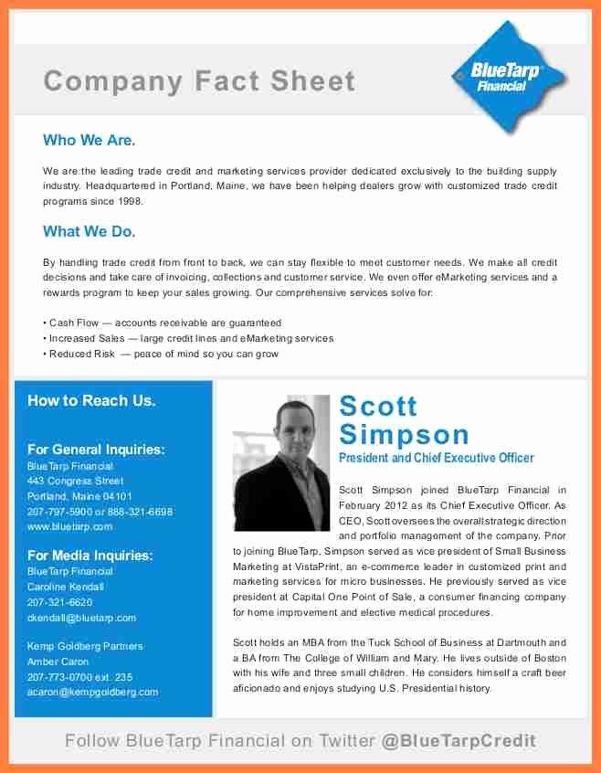 Company Fact Sheet Template Luxury 8 Pany Fact Sheet Template