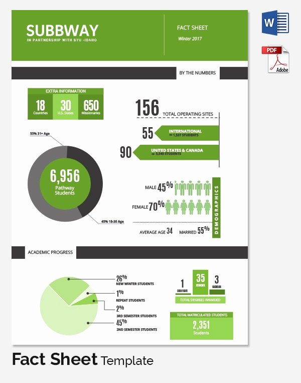 Company Fact Sheet Template Unique Fact Sheet Template 32 Free Word Pdf Documents