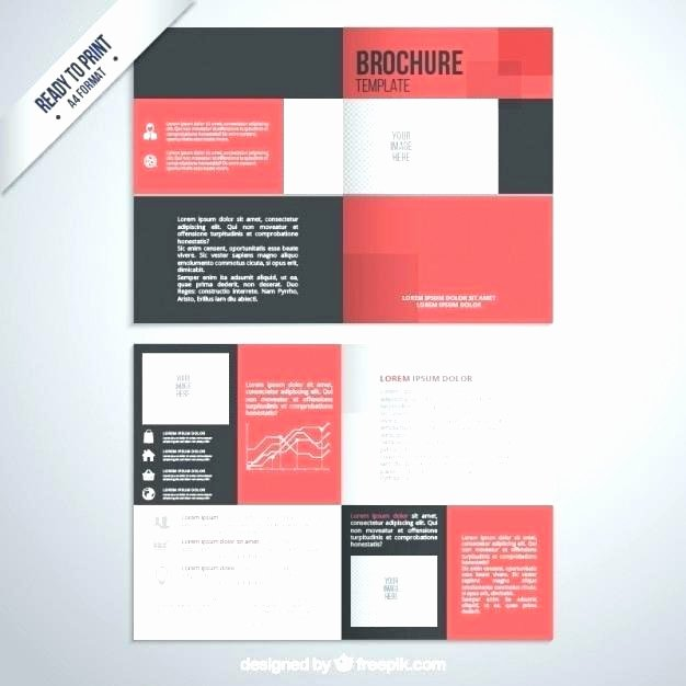 Conference Program Booklet Template Lovely Conference Program Booklet Template Funeral Mass Program