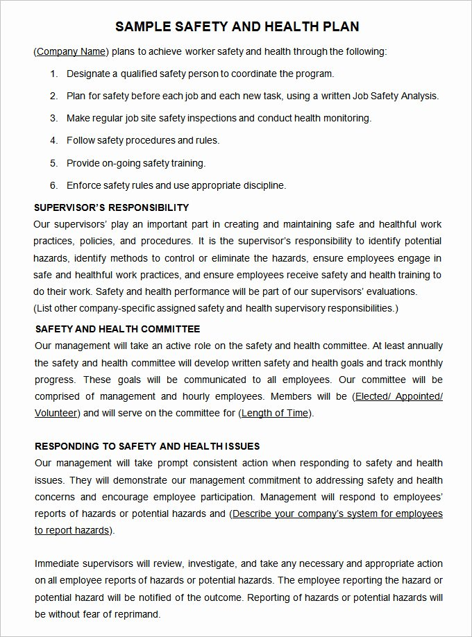Construction Safety Plan Template Lovely Construction Safety Plan Template 17 Free Word Pdf