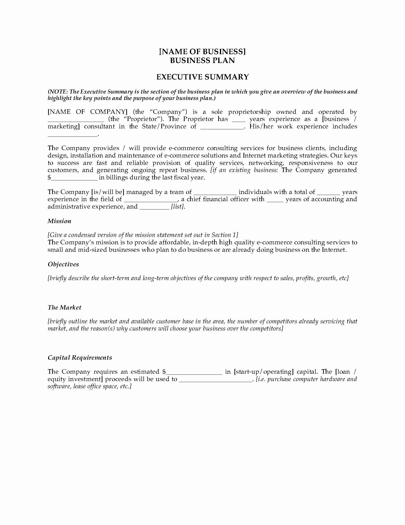 Consulting Business Plan Template Beautiful E Merce Consultant Business Plan