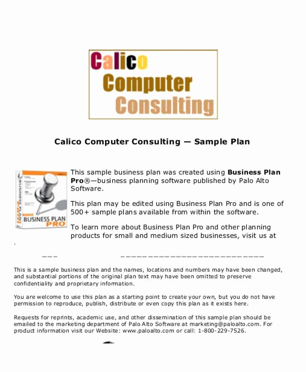 Consulting Business Plan Template New Business Plan Template for Consulting Firm 13 Consulting