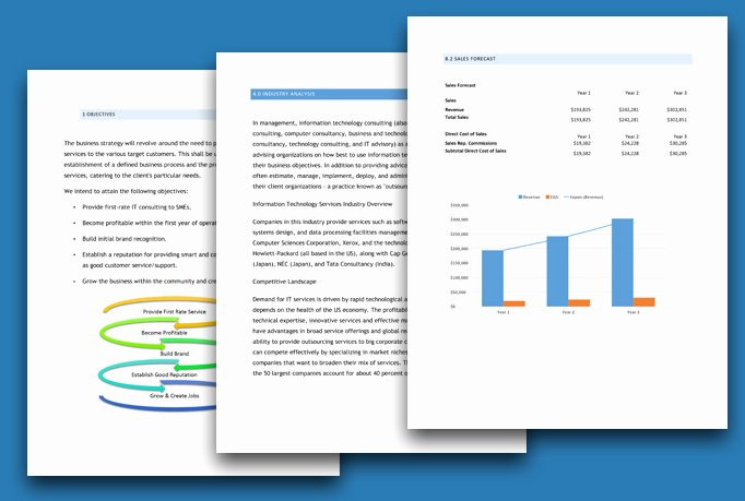 Consulting Business Plan Template New It Information Technology Consulting Pany Business