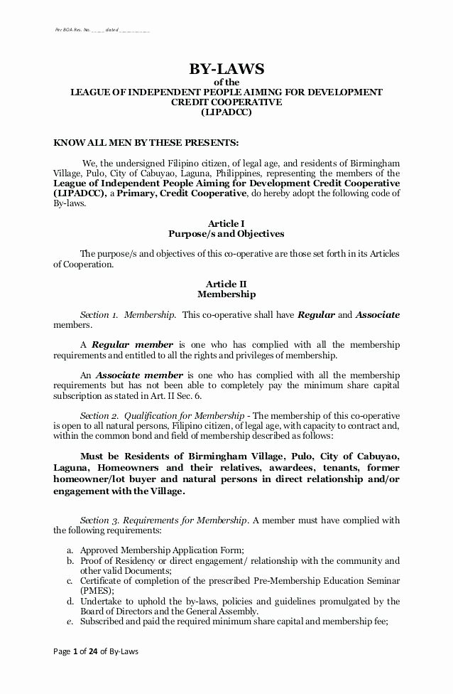Corporate bylaws Template Free Luxury Nice S Corporation bylaws Template Delighted