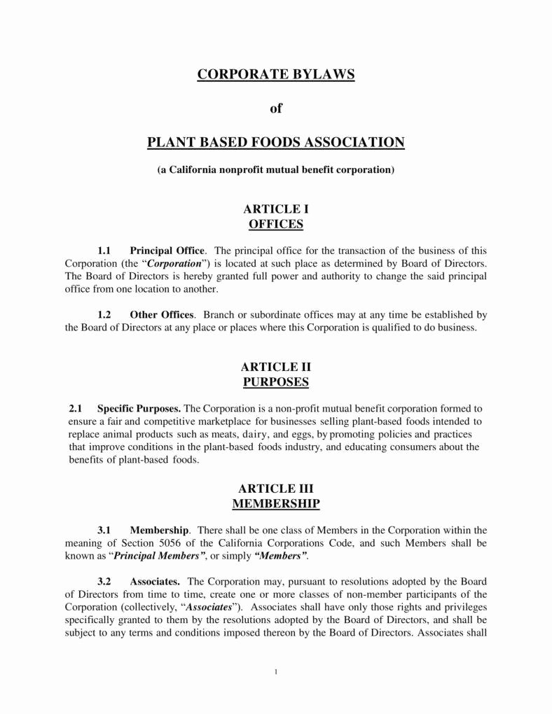 Corporate bylaws Template Pdf Awesome 9 Corporate bylaws Templates Pdf