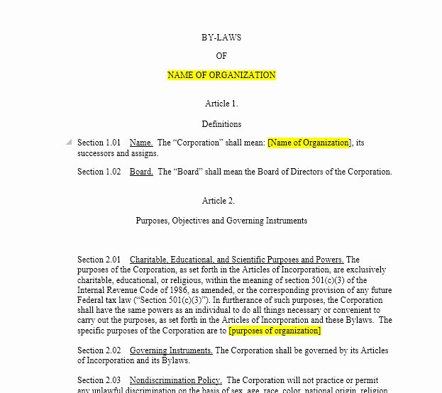 corporate bylaws template texas