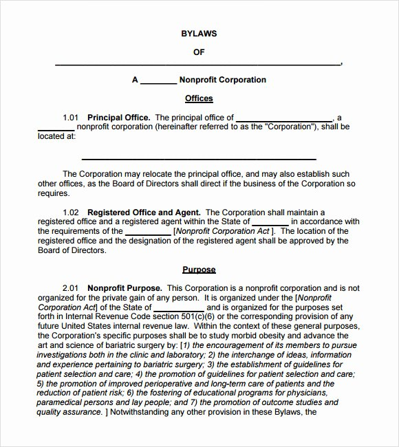 Corporate bylaws Template Word Inspirational 7 bylaws Templates