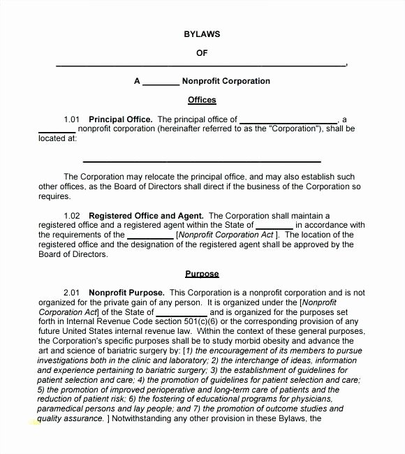 Corporate bylaws Template Word Lovely Corporate bylaws Template Florida Word Unique – Btcromania