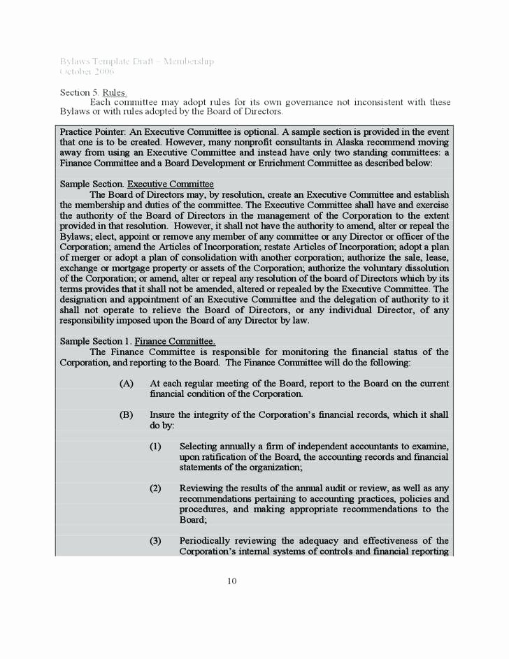 Corporate bylaws Template Word New Corporate bylaws Template Word – Btcromaniafo