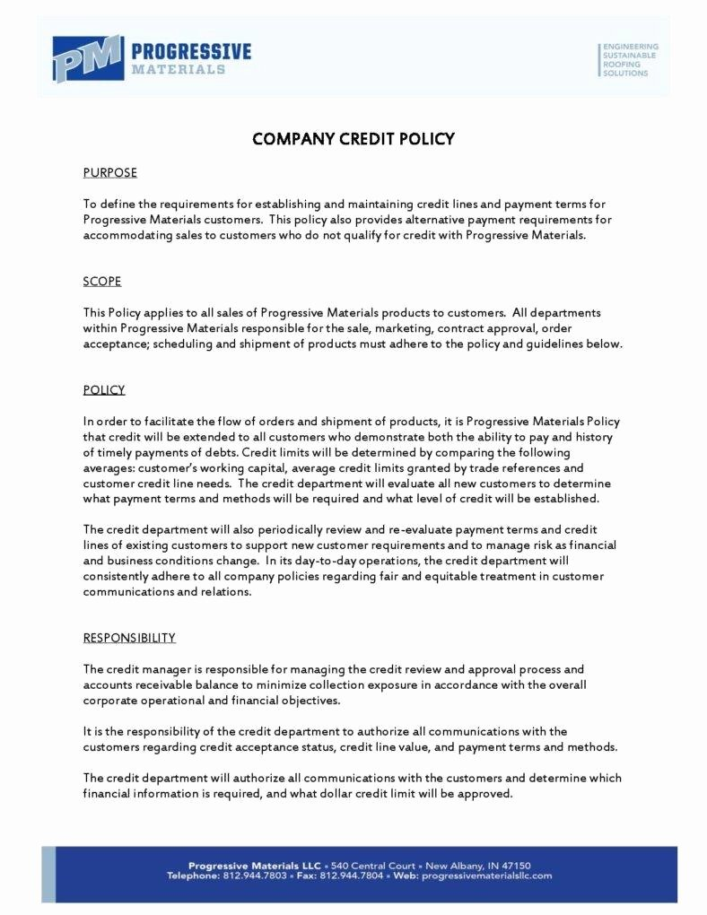 Corporate Security Policy Template Elegant 10 Sample Pany Policy Templates