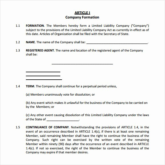 Corporation Operating Agreement Template Beautiful 10 Sample Operating Agreements – Pdf Word