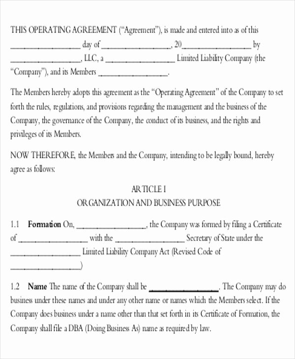 Corporation Operating Agreement Template Elegant 10 Operating Agreements Samples Examples Templates