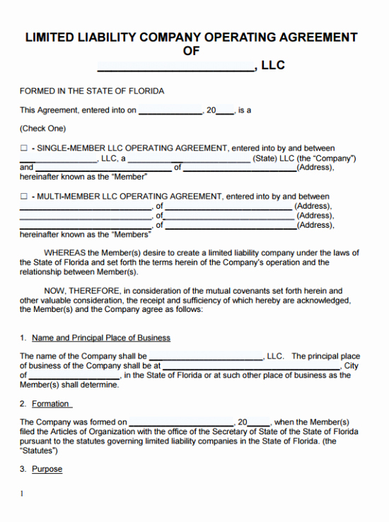 Corporation Operating Agreement Template Fresh Free Florida Llc Operating Agreement Template Pdf