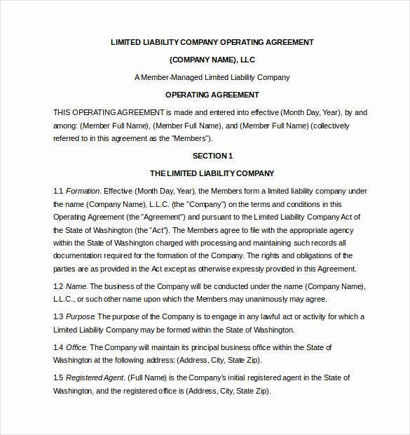Corporation Operating Agreement Template Lovely Operating Agreement Template 10 Free Word Pdf Document