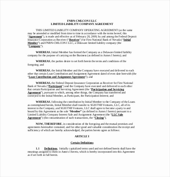 Corporation Operating Agreement Template Luxury 13 Operating Agreement Templates – Sample Example